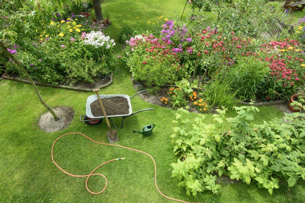 Garden - elevated view