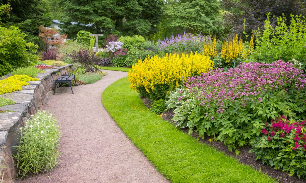 This photo shows some of the beautiful flowerbeds in Gothenburg Botanical garden in Sweden. This is a public park in central Gothenburg with only a volontary admission fee.