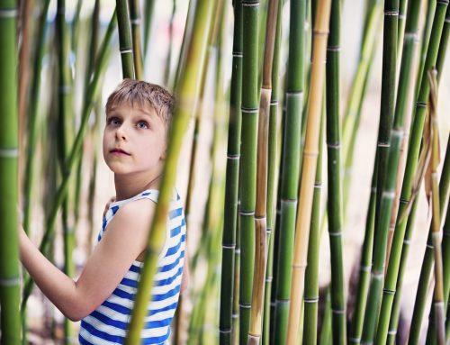 Why We Love Children's Gardens