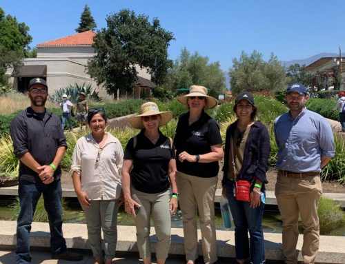 Optimism Grows for a Great Park Botanical Garden—Summer of 2021 Updates